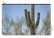 Saguaro 8 Carry-all Pouch