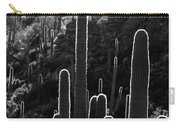 Saguaro Backlit Black And White Carry-all Pouch