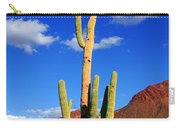 Saguaro Np Carry-all Pouch