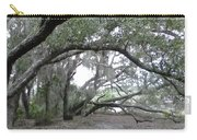 Saint Andrews Park Florida Carry-all Pouch