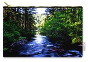 Salt Creek Falls Carry-all Pouch