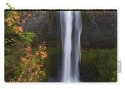 Salt Creek Falls Carry-all Pouch