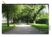 Salzburg Lane Carry-all Pouch by Carol Groenen