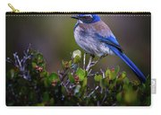 San Diego Bluebird Carry-all Pouch