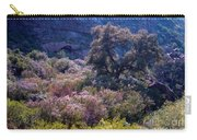 San Diego County Canyon Carry-all Pouch