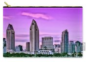 San Diego Panorama Carry-all Pouch