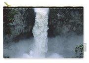 San Rafael Falls  Carry-all Pouch