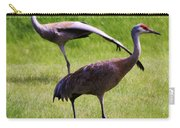 Sand Hill Crane Of 2 Carry-all Pouch