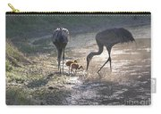Sandhill Crane Family In Morning Sunshine Carry-all Pouch by Carol Groenen