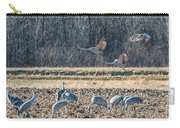 Sandhill Crane Series #3 Carry-all Pouch