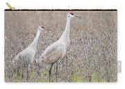 Sandhill Crane Stroll, Antigone Canadensis Carry-all Pouch