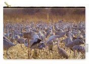 Sandhills Squabbling Carry-all Pouch