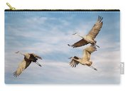 Sandies In Flight Carry-all Pouch