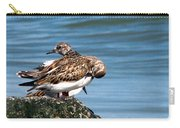 Sandpipers 2 Carry-all Pouch
