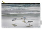 Sandpipers Carry-all Pouch by Julianne Felton