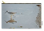 Sandpiper's Mirror Carry-all Pouch