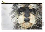 Santorini Dog Carry-all Pouch