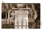 Savannah Sepia - Broken Carry-all Pouch