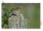 Savannah Sparrow.. Carry-all Pouch