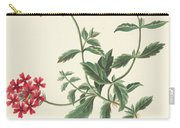 Scarlet Flowered Vervain Carry-all Pouch