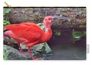 Scarlet Ibis 3 Carry-all Pouch