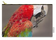 Scarlet Macaw - 2 Carry-all Pouch