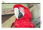 Scarlet Macaw Face Carry-all Pouch