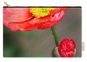 Scarlet Promise Carry-all Pouch
