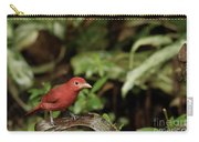 Scarlet Tanager In Costa Rica Carry-all Pouch