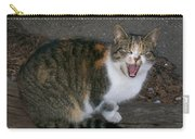 Scary Kitty Carry-all Pouch