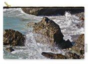 Scenic Sea Carry-all Pouch