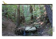 Scents And Subtle Sounds On Mount Tamalpais Carry-all Pouch