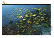 School Of Yellow Snapper, Great Barrier Carry-all Pouch