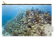 Schools Of Grunts, Snappers, Tangs Carry-all Pouch by Karen Doody
