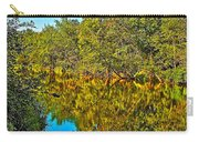 Schroon River Reflection In The Adirondacks-new York Carry-all Pouch