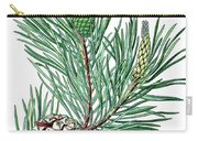 Scots Pine, Pinus Silvestris Carry-all Pouch