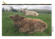Scottish Highland Calf Carry-all Pouch