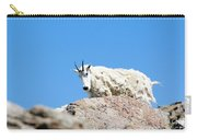 Scruffy Mountain Goat On The Mount Massive Summit Carry-all Pouch
