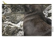 Sea Lion Close-up Carry-all Pouch