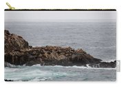 Sea Lion Hang Out - 2 Carry-all Pouch by Christy Pooschke