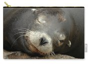 Sea Lion In San Francisco Carry-all Pouch