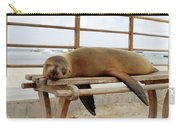 sea lion on a bench in Puerto Ayora, Santa Cruz Island, Galapagos Carry-all Pouch