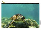 Sea Turtle #3 Carry-all Pouch