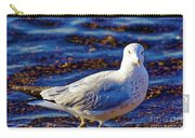 Seagull 1 Carry-all Pouch