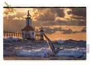 Seagull Takeoff - Tiscornia Beach  Carry-all Pouch