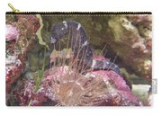 Seahorse1 Carry-all Pouch
