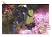 Seahorse3 Carry-all Pouch