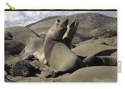 Seal Duet Carry-all Pouch