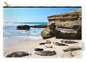 Seals Siesta On La Jolla Beach Carry-all Pouch