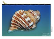 Seashell Wall Art 1 Carry-all Pouch